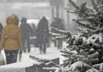 Погода в Москве в январе обещает дождливое лето