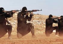 Иммигранты джихада