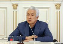 Открытое письмо Владимиру Васильеву